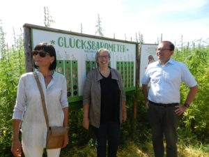 Eva Goldbach besucht Hanflabyrinth